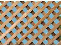 Woodway Mahogany Diagonal Lattice Heavy Duty 4x8 810.3330